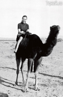 В Египте во время Недели советского кино. Начало 70-х гг.