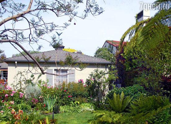 Бывшая теледива Джули Ньюмар утверждала, что тень от забора Белуши лишает света ее сад