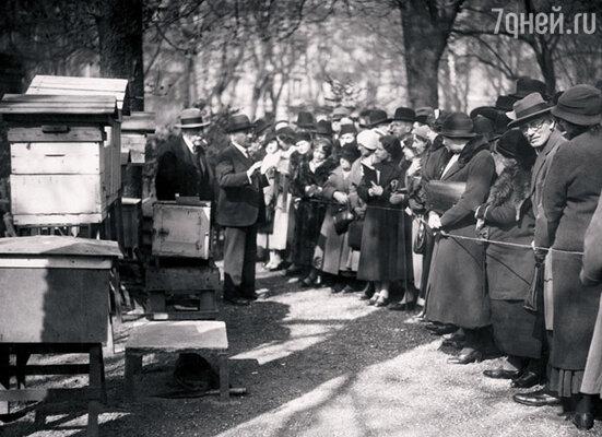���������� ���� � �������, �������, � �����. ������ ������ � �������������� ���� ��������� ��� � 1856 ����. �� ���� ������ 1934 ���� �������� � �������������� ���� ���� ����� ���� ��������