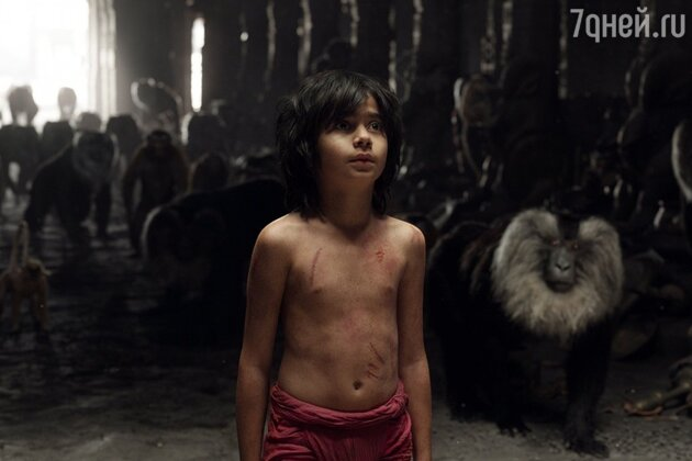 Кадр из фильма «Книга джунглей»