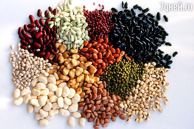 Разновидности фасоли