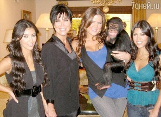 Ким Кардашьян с сестрами подарили своей матери детеныша шимпанзе по кличке Сюзи