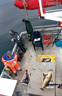 Группа немецких рыбаков много лет ездит в местечко Веннесунн «на заготовки»