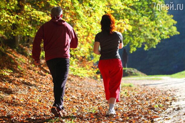 Постепенно увеличивайте длительность прогулок