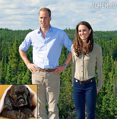Принц Уильям и Кейт