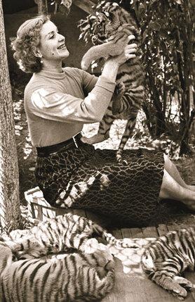 Чтобы вырастить из тигра артиста, нужно взять его еще тигренком, Маргарита Петровна это прекрасно знала