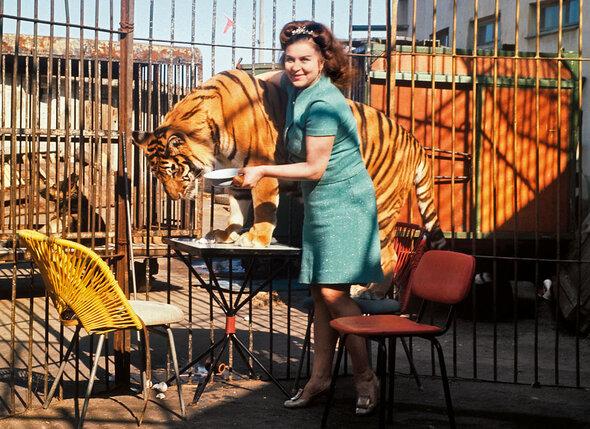 Маргарита Петровна чувствовала характер каждого из своих животных, они все у нее были уникальными. С тигрицей Юллой