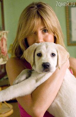 «С выбором собак не промахнешься — они всегда будут тебе верны...»