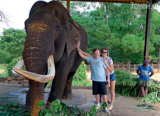 В заповеднике для слонов