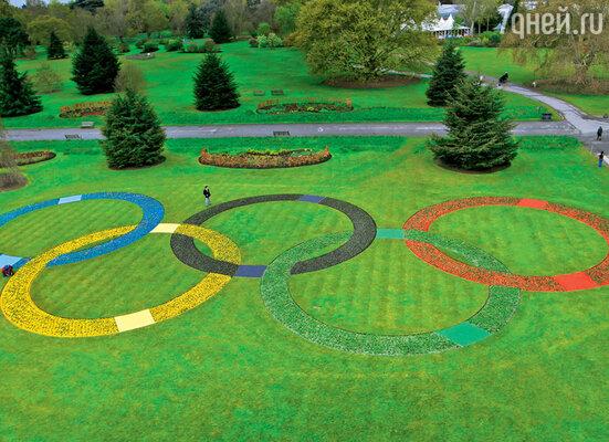 Эта олимпийская композиция из двадцати тысяч цветов— анютиных глазок, фиалок, мяты — появилась на днях вКоролевских ботанических садах Кью, что на западе Лондона. Ее длина 50 метров. Композиция столь огромна, что видеть ее могут все, кто лишь подлетает сегодня кЛондону, к аэропорту Хитроу