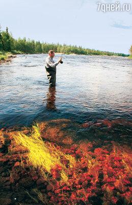 Кристально чистую воду можно пить прямо из реки