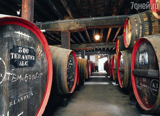Специальное хранилище для вина
