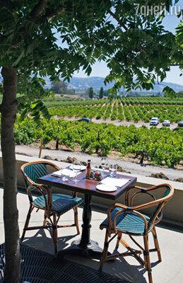 В 2006 году Коппола приобрел землю с виноградниками в долине Сонома — это еще один виноградный рай в Калифорнии. Здесь он производит менее дорогие вина и радует гостей домашней кухней по собственным рецептам в своем же ресторане