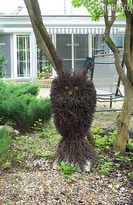 Участок перед домом сатирика украшают забавные скульптуры совы...