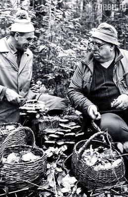 Папа обожал собирать грибы. С соседом по даче