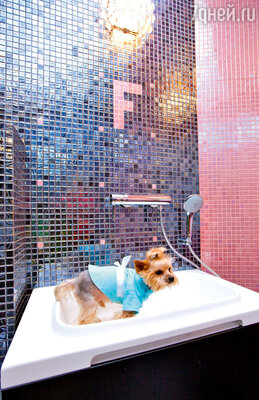 Личная ванна Фрэнки