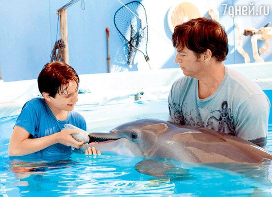 Кадр из фильма «История дельфина»