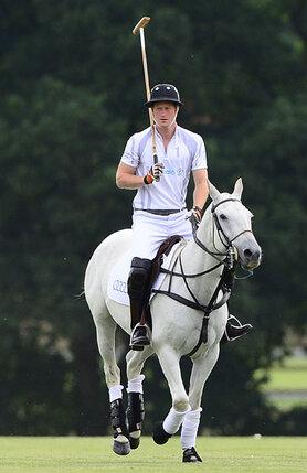 Вот он — настоящий принц набелом коне, о котором мечтают все романтичные барышни!