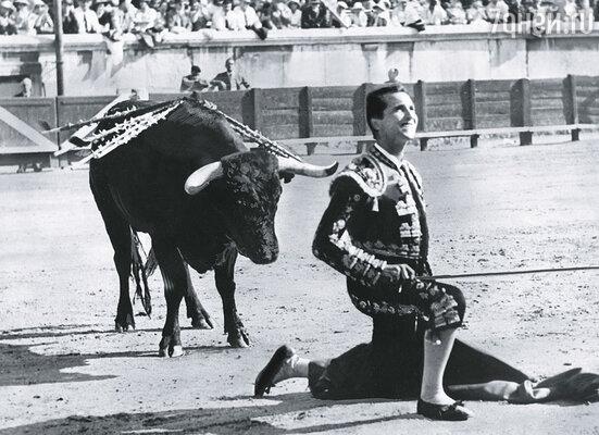 21-летний Луис Домингин, амбициозный выскочка, заявил, что легко отберет у Манолете репутацию лучшего матадора Испании