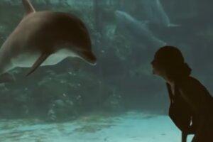 Девушка устроила представление для дельфина