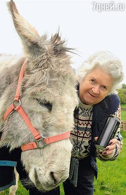Англичанка Лесли Мэйнджер гордится своим осликом-долгожителем: ему 54 года! Секрет, по ее словам, в том, что животное каждый день выпивает по... две-три банки пива