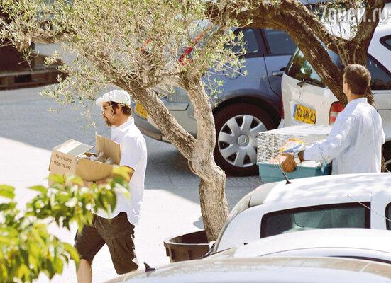 Чтобы погрузить все покупки в машину, Брэду пришлось привлечь водителя