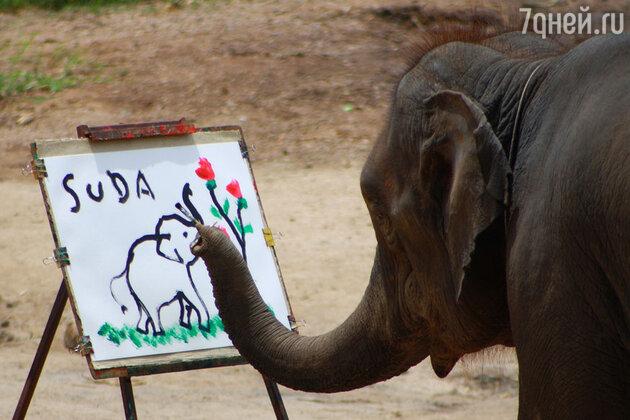 Слон рисует слона