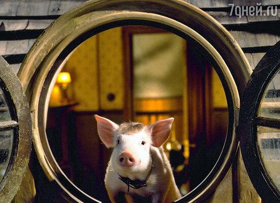 Кадр фильма «Бэйб. Поросенок в городе»
