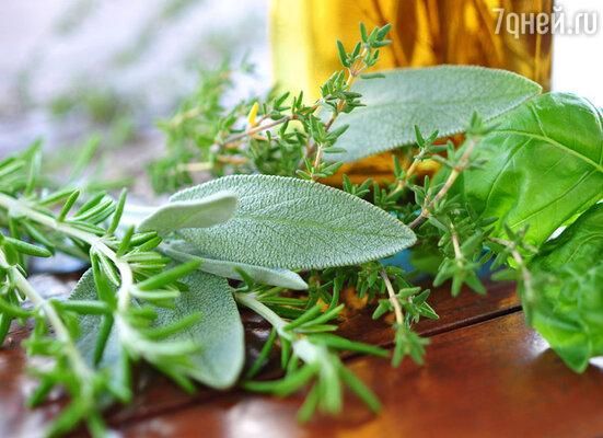 Каждый день на столе должна присутствовать свежая зелень