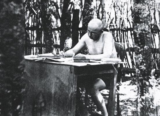 «Единственное мое прибежище - письменный стол», - признавался дед. Волков на даче, 1939 г.