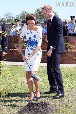 Герцог и герцогиня Кембриджские посадили куст эвкалипта в мемориальном саду базы в память о погибших