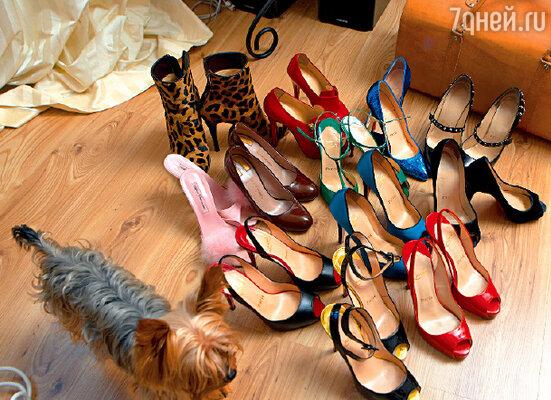 Каждая пара этой обуви стоит более тысячи евро, но молодую певицу это не останавливает (рядом с коллекцией — йорк Тошик)