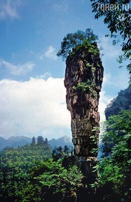 С недавних пор одну из самых высоких гор заповедника (ее высота около 150 метров)называют: «Аллилуйя, Аватар!»