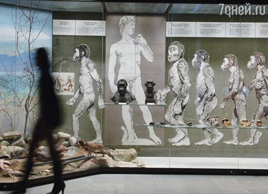Век Дарвиновского музея