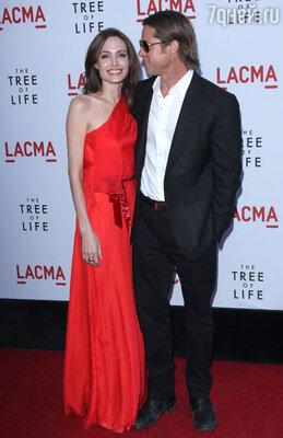Джоли и Питту не до свадьбы: из-за съемок на разных континентах звезды едва успевают выкроить время на короткие встречи