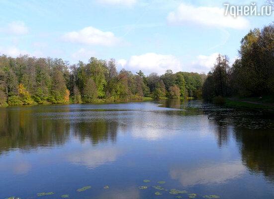 День Эколога в Кузьминском парке