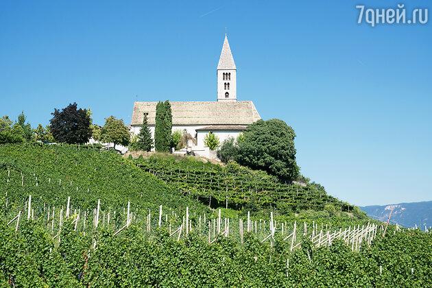 Виноградники Мерано