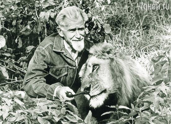 Джордж Адамсон за свою жизнь  переменил много профессий: был резчиком сизаля, золотоискателем, трактористом, охотником.  Со львом Боем, 1971 г.