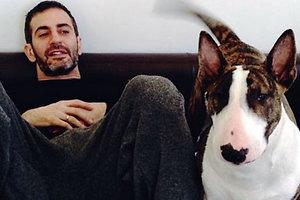 Марк Джейкобс сделал своего пса звездой новой рекламной кампании