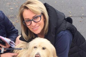 Наталия Гулькина спасла собаку из-под колес автомобиля