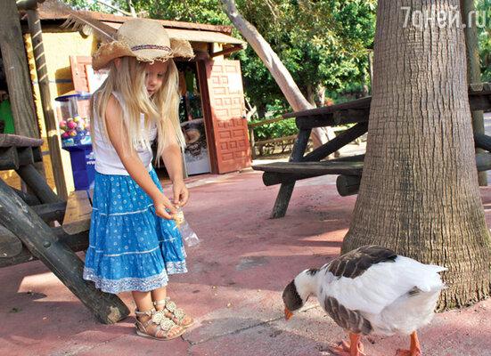 Юная Лида храбро бросилась кормить гуся, от которого шарахались в страхе другие малыши