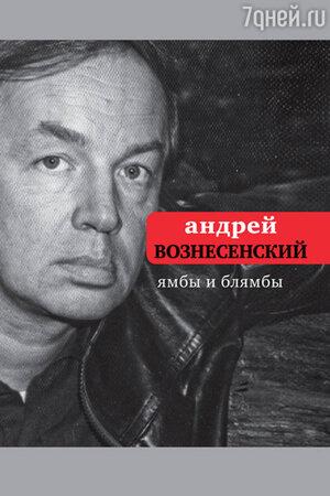 Андрей Вознесенкий, Ямбы и блямбы