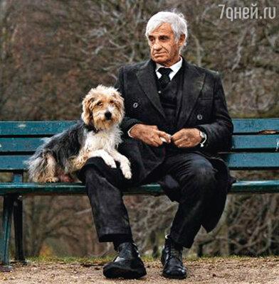 «Человек и его собака»