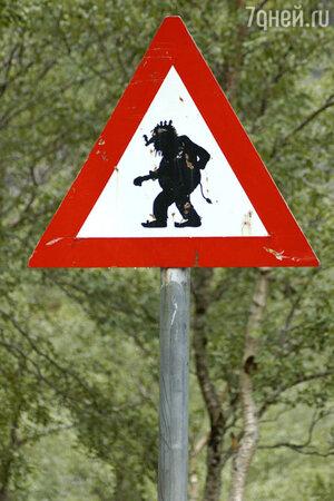 Знак «Осторожно! Тролли»  в Исландии