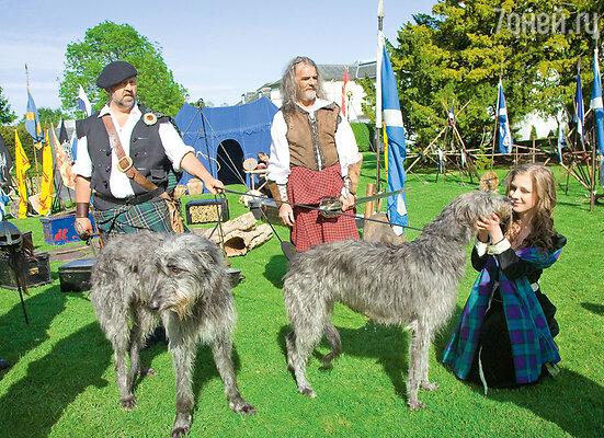 Лиза с радостью познакомилась в Престонфилде с двумя очаровательными ирландскими волкодавами — излюбленными собаками королей со времен Средневековья