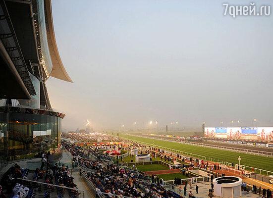 Приоритетным видом спорта для Дубая является гольф, поэтому здесь находятся десятки оборудованных по последнему слову техники полей, где проводятся и международные турниры.