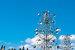 Местный художник Сезар Манрике создал огромные металлические конструкции, состоящие из цветных шариков, блестящих плоскостей и металлических «сачков» для ветра, приводящего эти скульптуры в движение