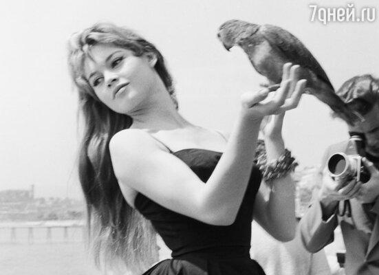 Бриджит Бардо, 1956 г.