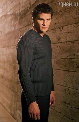 Дэвид Бореаназ в сериале «Баффи — истребительница вампиров» и его спин-оффе — «Ангеле»