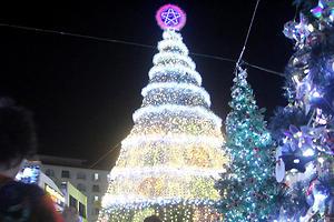 16 самых красивых новогодних елок мира